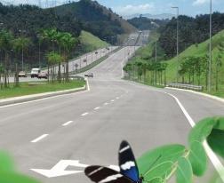 Highway_bee